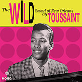 Tousan: The Wild Sound of New Orleans de Allen Toussaint