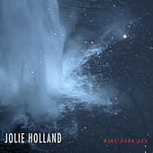 Wine Dark Sea de Jolie Holland