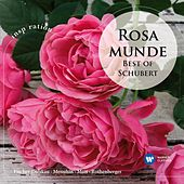 Rosamunde - Best of Schubert (Inspiration) von Various Artists