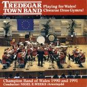 Chwarae Dros Gymru! / Playing For Wales! by Seindorf Tredegar Band