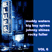 The Blues  Volume 6 by Various Artists