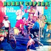 Este Es Tu Tierra by Bonny Cepeda
