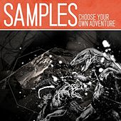 Choose Your Own Adventure de The Samples