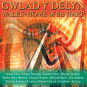 Gwlad Y Delyn / Wales - Home Of The Harp by Various Artists