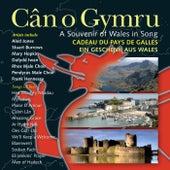 Can O Gymru / A Souvenir Of Wales In Song de Various Artists