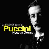 Nessun Dorma: Les Grands Chefs-d'œuvre de Giacomo Puccini by Various Artists