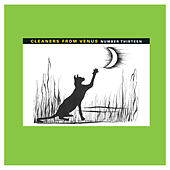 Number Thirteen von The Cleaners From Venus