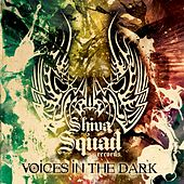 Voices In The Dark - EP by Various Artists