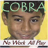 No Work All Play by Cobra