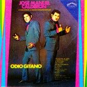 Odio Gitano by Jose Manuel Calderon