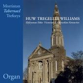 Ffefrynnau Ddoe / Victorian & Edwardian Favourites de Huw Tregelles Williams