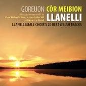 Goreuon Cor Meibion Llanelli / Best Of The Llanelli Male Voice Choir by Cor Meibion Llanelli Male Voice Choir