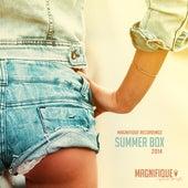 Magnifique Recordings Summer Box 2014 von Various Artists