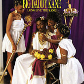 Ain't No Half Steppin de Big Daddy Kane