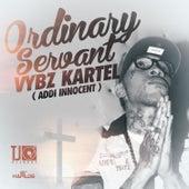 Ordinary Servant - Single by VYBZ Kartel