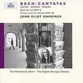 Bach, J.S.: Easter Cantatas BWV 6 & 66 by Various Artists
