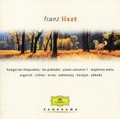 Liszt: Piano Concerto No.1; Piano Sonata in B by Various Artists