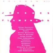 Los Jóvenes Flamencos, Vol. 7 de Various Artists