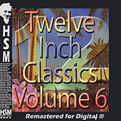 Twelve Inch Disco Classics from the 70s, Vol. 6 de Various Artists