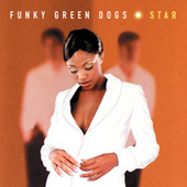 Star by Funky Green Dogs