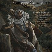 Franz Schubert: Gott Ist Mein Hirt for 2 Trumpets, 2 Horns, Piano, Organ and Guitar. Psalm 23, Op. 132, D. 706 by Giuseppe Galante