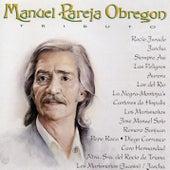 Manuel Pareja Obregoni Tributo by Various Artists