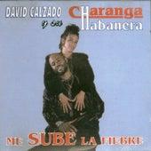 Me sube la fiebre by David calzado y su Charanga Habanera