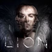 Lion by Peter Murphy