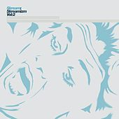 Skreamizm, Vol. 2 by Skream