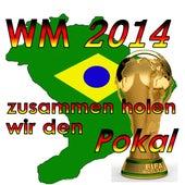 WM 2014 - Zusammen holen wir den Pokal de Various Artists