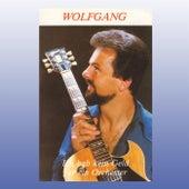 Ich hab kein Geld für ein Orchester by Wolfgang