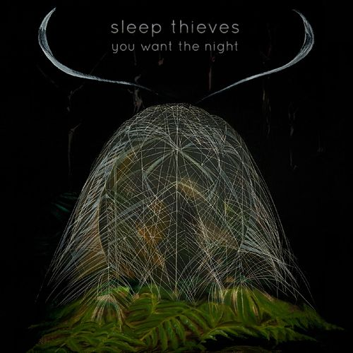 You Want The Night by Sleep Thieves