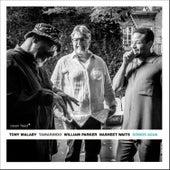Somos Agua by Tony Malaby's Tamarindo