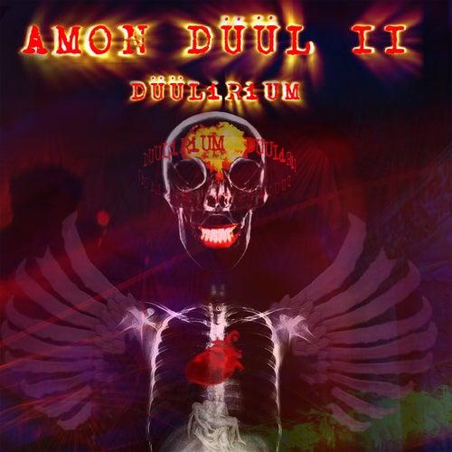 Düülirium by Amon Duul II