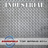 Industrial Top Spring 2014 - EP by Various Artists