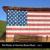 The Roots of Country Blues Music, Vol. 1 by Various Artists