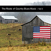 The Roots of Country Blues Music, Vol. 3 by Various Artists