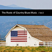The Roots of Country Blues Music, Vol. 2 by Various Artists