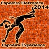 Capoeira Eletronica 2014 de Various Artists