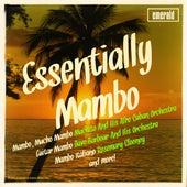 Essentially Mambo von Various Artists
