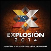 Explosion 2014 by Various Artists