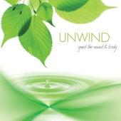 Unwind: Quiet the Mind & Body by Jeff Victor