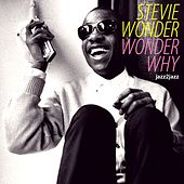 Wonder Why - How It All Started von Stevie Wonder
