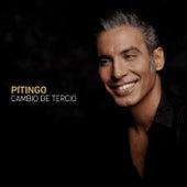 Cambio De Tercio von Pitingo