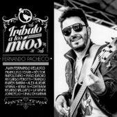 Tributo a los Mios von Fernando Pacheco