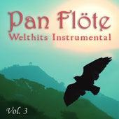 Welthits Instrumental, Vol. 3 von Pan Flöte