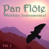 Welthits Instrumental, Vol. 2 von Pan Flöte