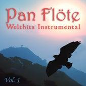 Welthits Instrumental, Vol. 1 von Pan Flöte