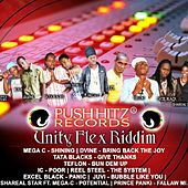 Unity Flex Riddim von Various Artists