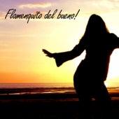 Flamenquito del Bueno! de Various Artists